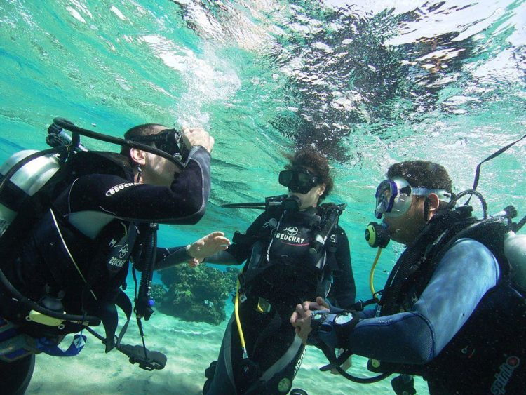 Why a Scuba Diving Career May Not be Your Dream Job