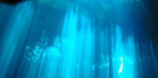 Diving Cenotes