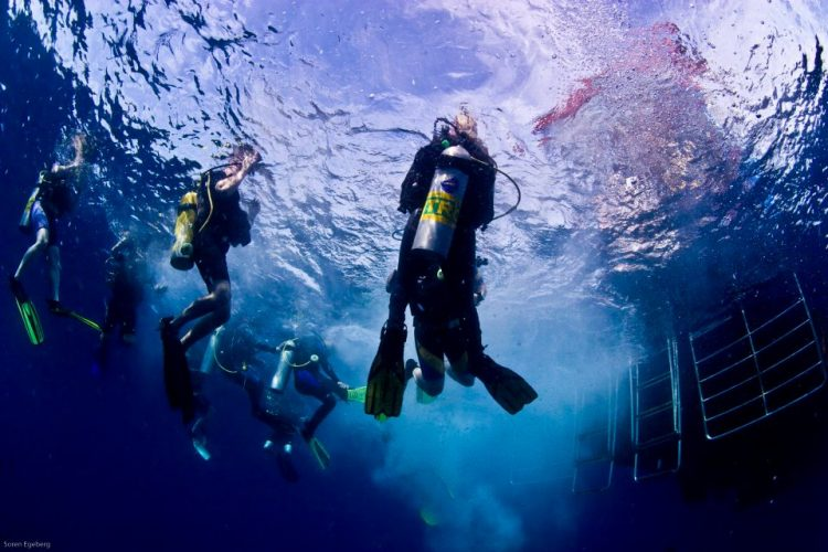 Diving with Nitrox? Here\'s What You Need to Know to Dive Safe -