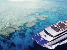 dive the great barrier reef