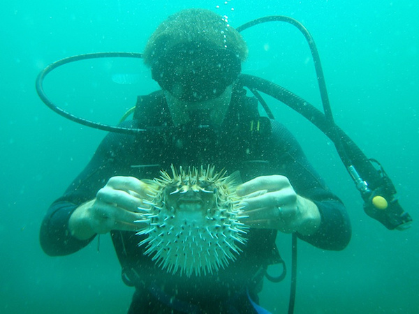 touch marine life
