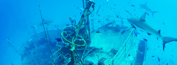 wreck dive bahamas 1