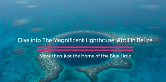 Dive The Lighthouse Atoll in Belize