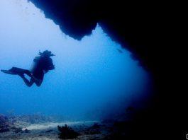 Diving in Utila