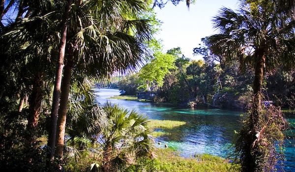 Scuba Diving the Clear Waters Of Rainbow River in Florida ...