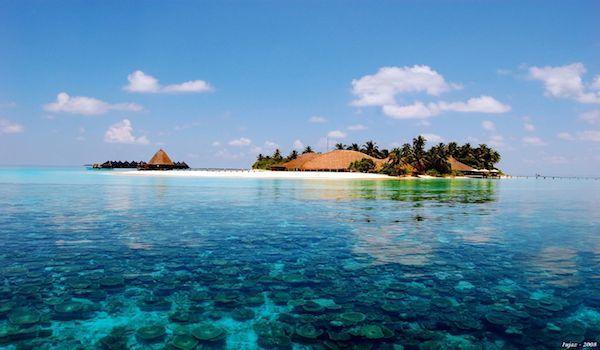 scuba dive maldives